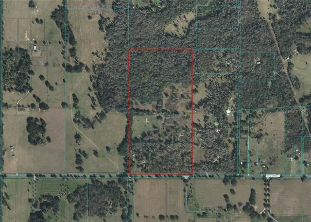 6901 NW 193RD Street, Micanopy, FL 32667 (MLS #OM611798) :: RE/MAX Local Expert