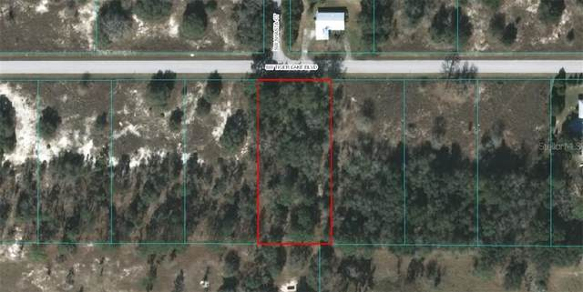 Lot 5 SW Tiger Lake Boulevard, Dunnellon, FL 34431 (MLS #OM611802) :: Griffin Group