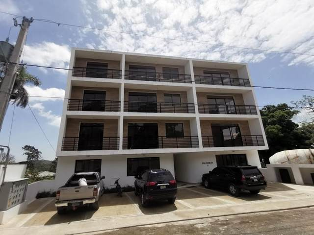 Km 2 Calle Federico Basillas 1A, JARABACOA, OC  (MLS #OM611895) :: Sarasota Property Group at NextHome Excellence