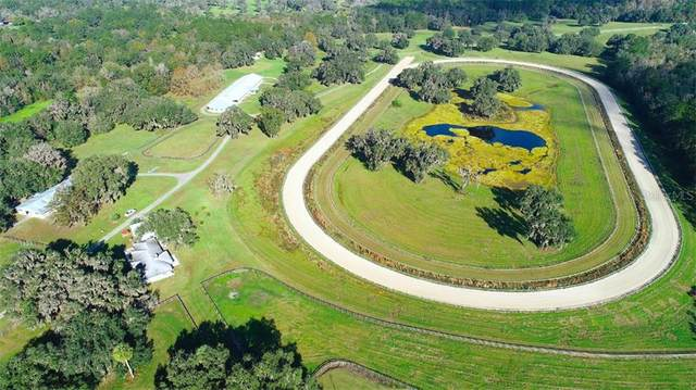 10871 NW 198TH Street, Micanopy, FL 32667 (MLS #OM611899) :: Better Homes & Gardens Real Estate Thomas Group
