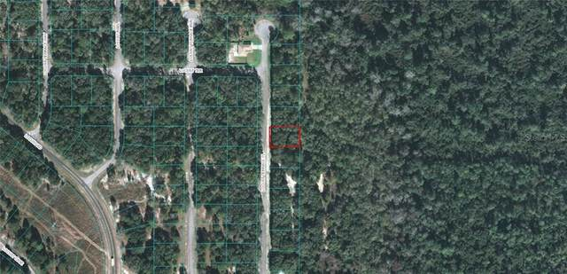 Locust Terrace Place, Ocala, FL 34472 (MLS #OM611912) :: Carmena and Associates Realty Group