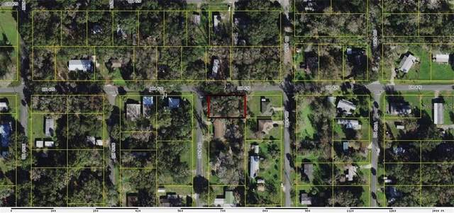 LOT 27 Cr 426C, Lake Panasoffkee, FL 33538 (MLS #OM611943) :: Griffin Group