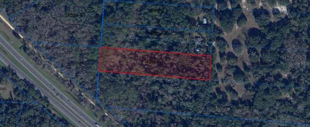 12426 SW 1ST Street, Micanopy, FL 32667 (MLS #OM611971) :: Premium Properties Real Estate Services