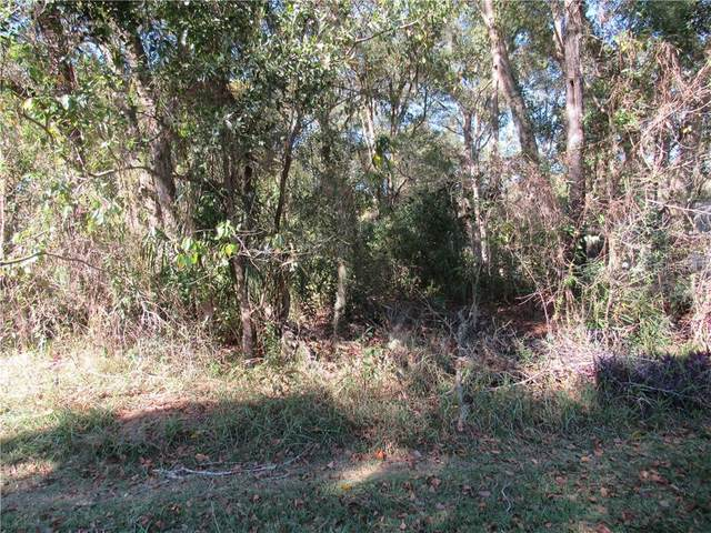 0 SW 193RD Circle, Dunnellon, FL 34432 (MLS #OM612028) :: Armel Real Estate