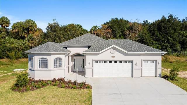 11291 SE 170TH Place, Summerfield, FL 34491 (MLS #OM612066) :: Burwell Real Estate