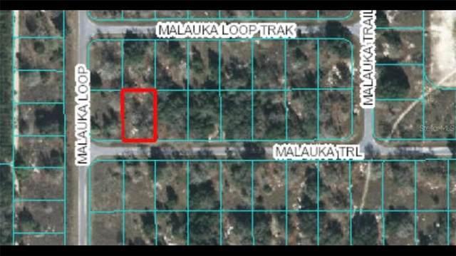 00 Malauka Trail, Ocklawaha, FL 32179 (MLS #OM612216) :: Southern Associates Realty LLC