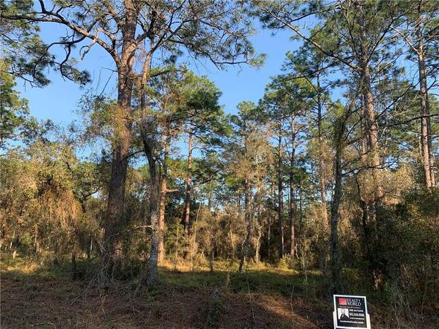 NW Beuna Vista Rd, Dunnellon, FL 34431 (MLS #OM612302) :: Team Borham at Keller Williams Realty