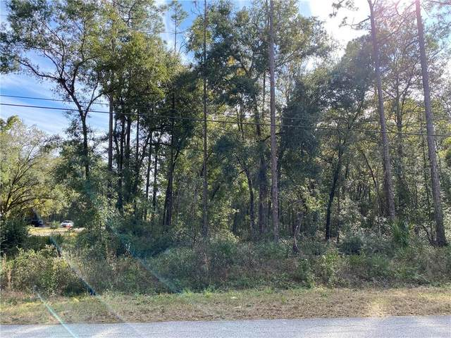 TBD Tarpon Boulevard, Dunnellon, FL 34433 (MLS #OM612303) :: Griffin Group