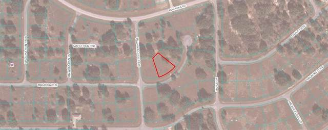 0 Malauka Run Road, Ocklawaha, FL 32179 (MLS #OM612460) :: Young Real Estate
