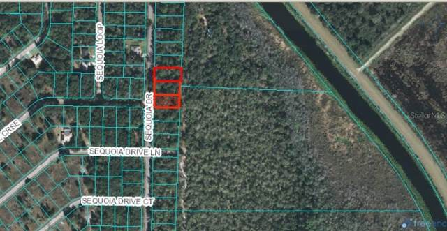 0000 Sequoia, Ocklawaha, FL 32179 (MLS #OM612607) :: Young Real Estate