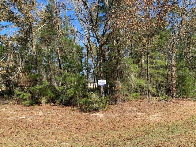 0 SW 131ST PLACE Road, Ocala, FL 34473 (MLS #OM612698) :: Griffin Group