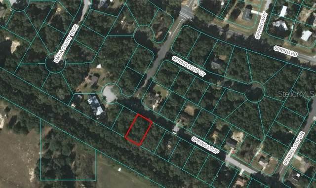 00 Spring Loop, Ocala, FL 34472 (MLS #OM612741) :: Armel Real Estate