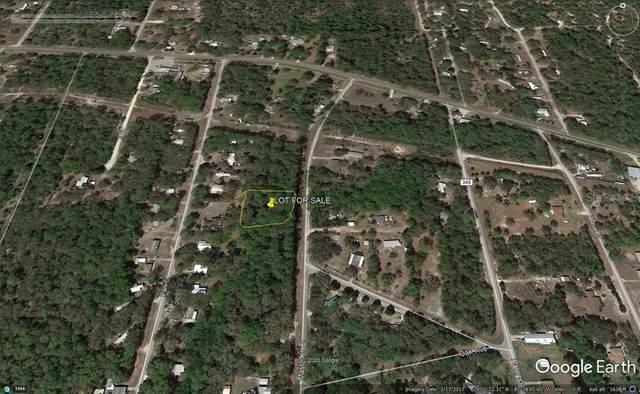 TBD Mastadon Drive, Inglis, FL 34449 (MLS #OM612766) :: Griffin Group