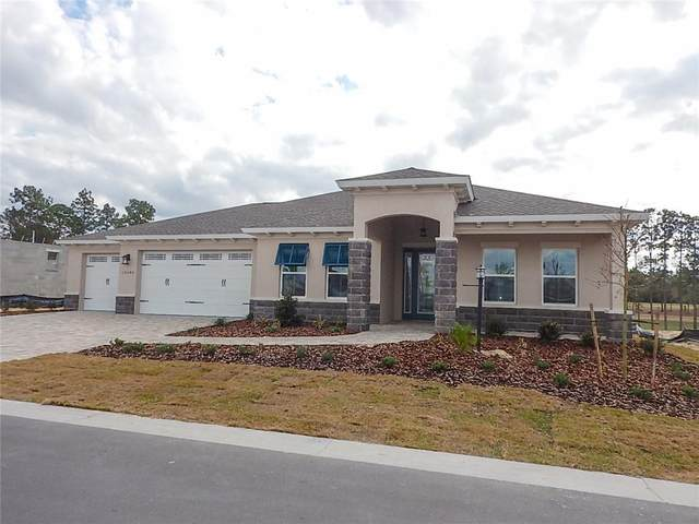 10346 SW 93RD Place, Ocala, FL 34481 (MLS #OM612885) :: Kelli and Audrey at RE/MAX Tropical Sands