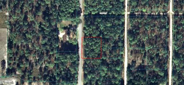 0 SW 159TH Court, Ocala, FL 34481 (MLS #OM612886) :: EXIT King Realty