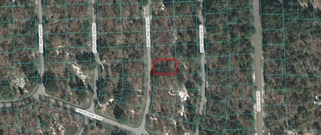 TBD Fisher Lane Track, Ocklawaha, FL 32179 (MLS #OM612894) :: Sarasota Home Specialists
