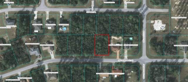 TBD SW 145TH PLACE Road, Ocala, FL 34473 (MLS #OM612998) :: Griffin Group