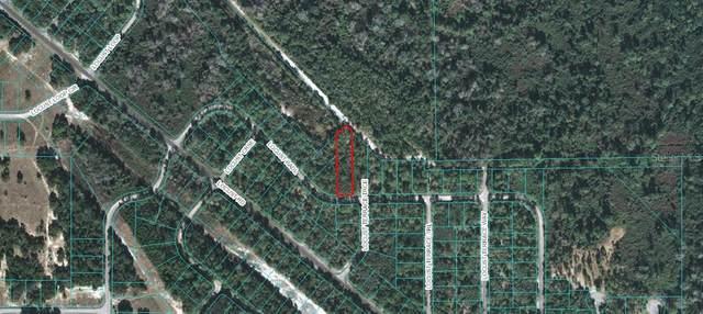 Locust  Radl, Ocala, FL 34472 (MLS #OM613045) :: Pepine Realty