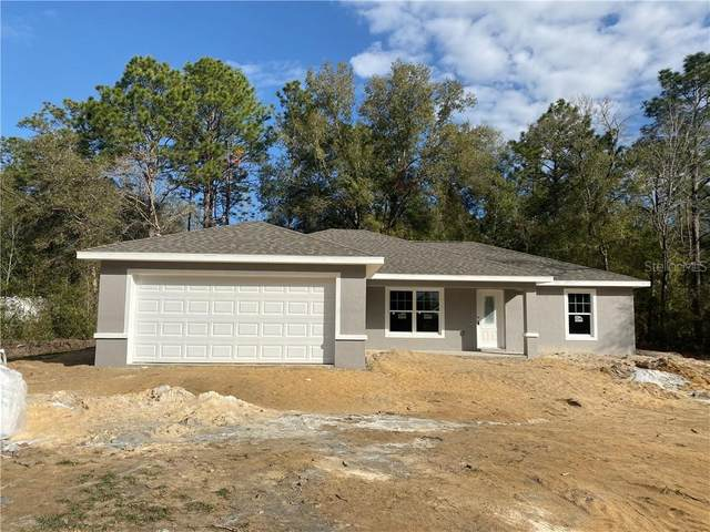2691 W Madrid Street, Citrus Springs, FL 34434 (MLS #OM613046) :: Everlane Realty