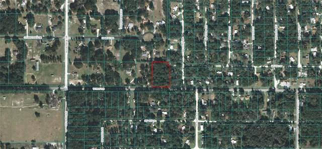 13785 W Highway 328, Ocala, FL 34482 (MLS #OM613052) :: Griffin Group
