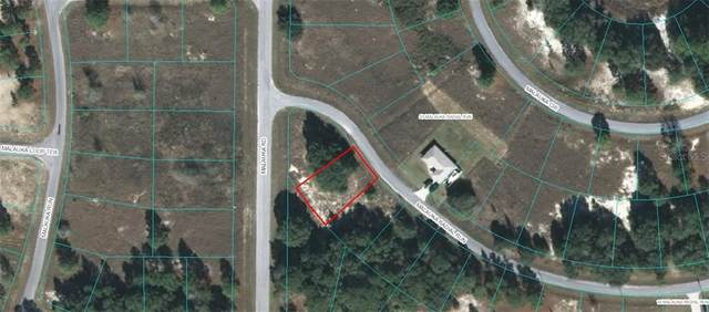 TBD Malauka Radial Run, Ocklawaha, FL 32179 (MLS #OM613187) :: Premium Properties Real Estate Services