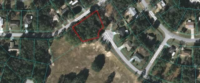 TBD Bahia Circle Terrace, Ocala, FL 34472 (MLS #OM613269) :: Young Real Estate
