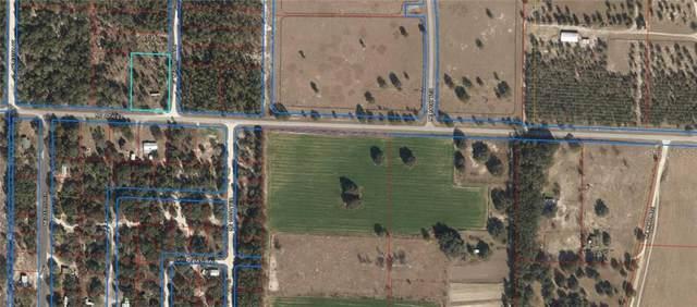 NE 60TH Street, Williston, FL 32696 (MLS #OM613299) :: Globalwide Realty