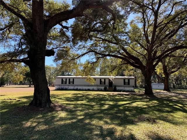 19400 SE 21ST Place, Morriston, FL 32668 (MLS #OM613324) :: Premier Home Experts