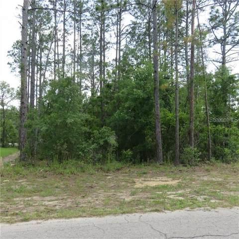 SW 78 Circle, Ocala, FL 34473 (MLS #OM613333) :: Premier Home Experts