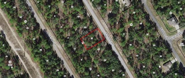 9318 N Pineview Way, Citrus Springs, FL 34434 (MLS #OM613420) :: Young Real Estate