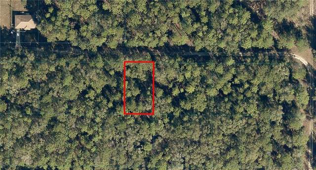 00 SW 10TH Place, Ocala, FL 34481 (MLS #OM613529) :: Griffin Group