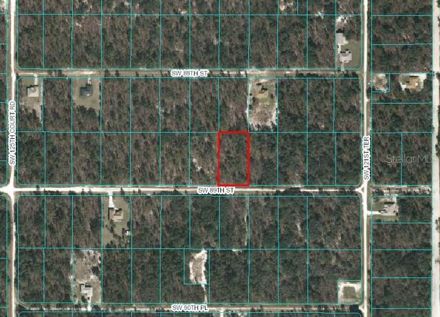 tbd SW 89 Street, Dunnellon, FL 34432 (MLS #OM613610) :: Young Real Estate