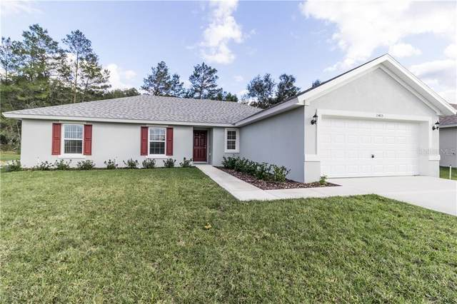 3412 SW 155 Place, Ocala, FL 34473 (MLS #OM613616) :: Young Real Estate