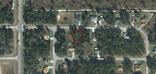 0 SW 128 STREET ROAD, Ocala, FL 34473 (MLS #OM613721) :: Griffin Group