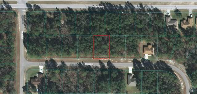 0 SW 131 PLACE, Ocala, FL 34473 (MLS #OM613816) :: Griffin Group