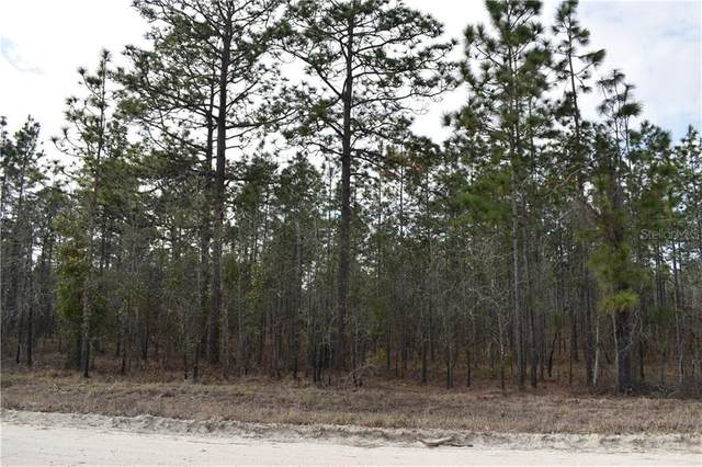 Lot 43 TBD SE 140TH Avenue, Morriston, FL 32668 (MLS #OM613846) :: Team Buky