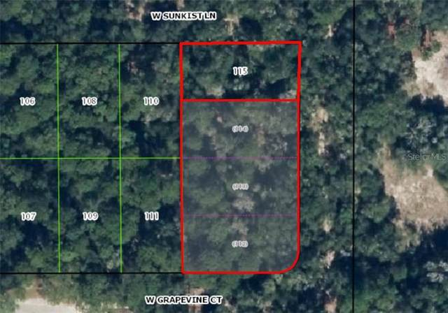 12018 N Peartree Terrace, Dunnellon, FL 34433 (MLS #OM613859) :: Everlane Realty