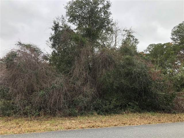 0 Oak Circle, Ocala, FL 34472 (MLS #OM613862) :: Everlane Realty