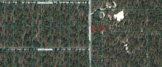 0 Nw Terrapin Drive, Dunnellon, FL 34431 (MLS #OM613911) :: Griffin Group