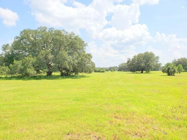 Lot 6,7 NE Highway 315, Orange Springs, FL 32182 (MLS #OM613923) :: Griffin Group