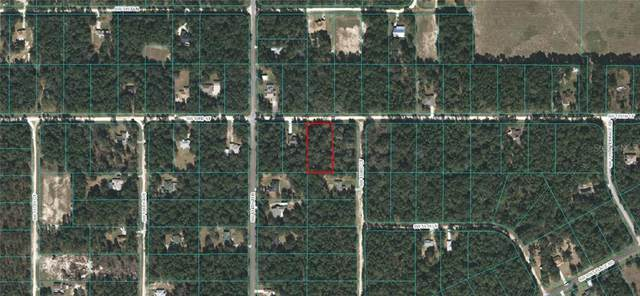TBD SW 53 RD Street, Ocala, FL 34481 (MLS #OM613925) :: Kelli and Audrey at RE/MAX Tropical Sands