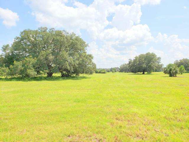 Lots 6,7,8,9 (45ac) NE Highway 315, Orange Springs, FL 32182 (MLS #OM613926) :: Griffin Group
