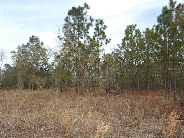 0  (lot19) SW Breakwater Boulevard, Dunnellon, FL 34431 (MLS #OM613929) :: Griffin Group