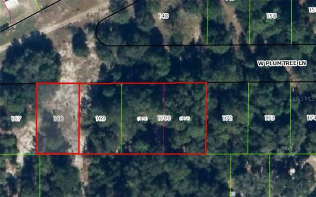 2682 W Plumtree Lane, Dunnellon, FL 34433 (MLS #OM613947) :: Realty Executives Mid Florida