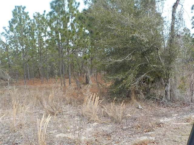 0 SW Breakwater (Lot 19) Boulevard, Dunnellon, FL 34431 (MLS #OM613979) :: BuySellLiveFlorida.com