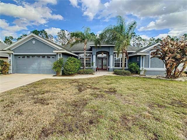 10191 SE 69TH Terrace, Belleview, FL 34420 (MLS #OM614033) :: Frankenstein Home Team