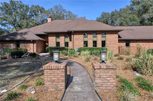 7043 SW 99TH Street, Ocala, FL 34476 (MLS #OM614066) :: Premier Home Experts