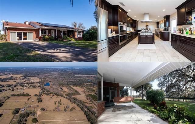13005 NW Gainesville Road, Reddick, FL 32686 (MLS #OM614168) :: Everlane Realty