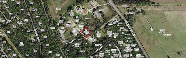 1695 E Manko Drive, Hernando, FL 34442 (MLS #OM614213) :: The Paxton Group