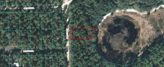 NE 112TH, Fort Mc Coy, FL 32134 (MLS #OM614274) :: Premier Home Experts